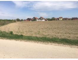Agricultural plot, Sale, Vinkovci, Vinkovačko Novo Selo